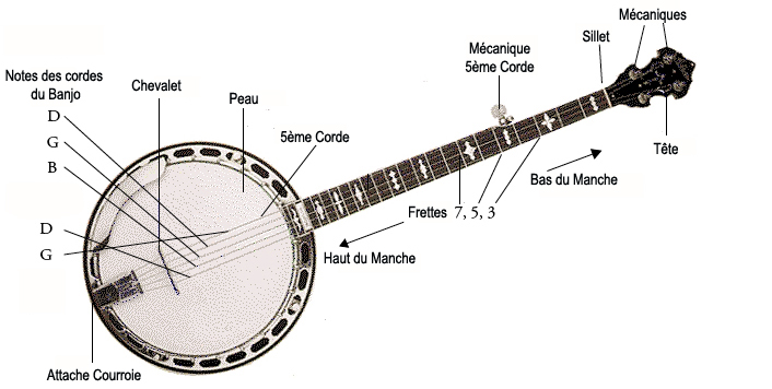 Le mort du jour - Page 5 Banjo