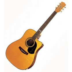 Guitare Maton Signature Tommy Emmanuel TE1