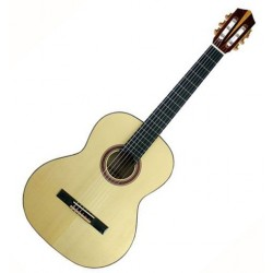 Guitare Kremona Tangra TS