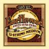 Ernie Ball Earthwood 12-String Medium