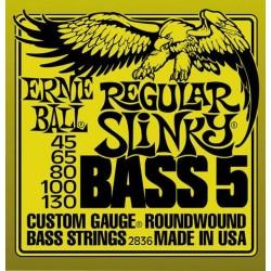 Jeu Cordes Ernie Ball 5 Cordes Regular Slinky 45/130