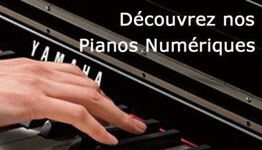 Découvrez nos pianos numériques
